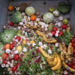 Fórum indul az élelmiszerpazarlás és veszteség csökkentéséért