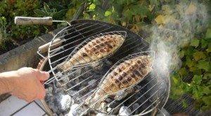 l_5147_grilling.fish_-300x165