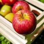 Itt van az ősz, itt van újra…az almaszezon