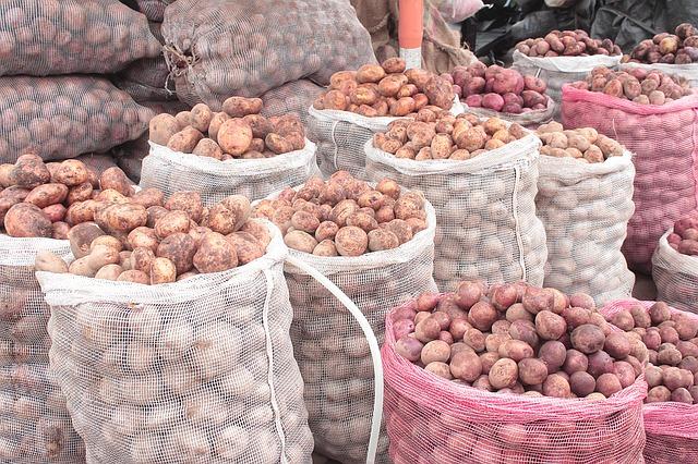 potato-1487979_640