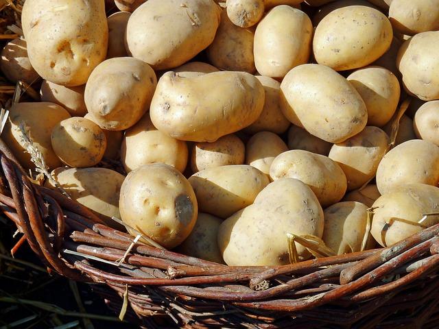 potato-1700583_640