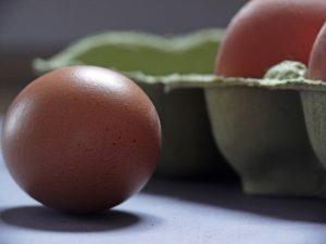 egg-1803368_640