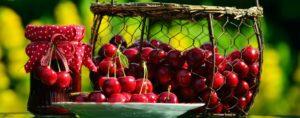 cherries-1513949_960_720