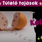 Túlélő tojások