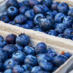 Kéklő savanykás bogyók