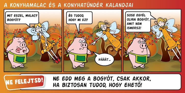 kepregeny_2014_10